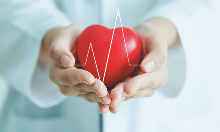 The heart is an important part of health